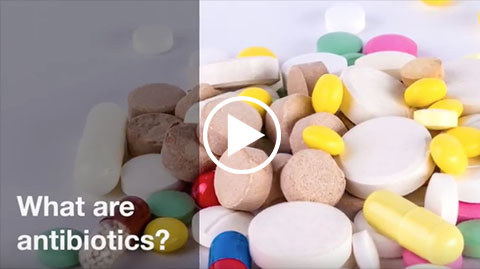 what-are-antibiotics